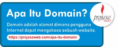 apa itu domain pengertian domain name